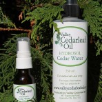 Hydrosol Cedar Water 250ml bottle
